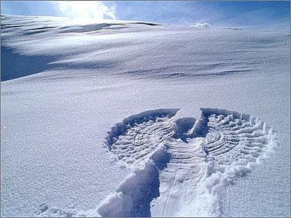 snow20angel-main_full
