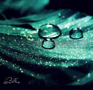 greenness_by_bellalleb