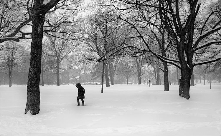 queens-park_snow_bw_dark-figure_01