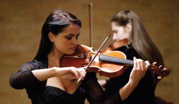 banner_violinist[1]