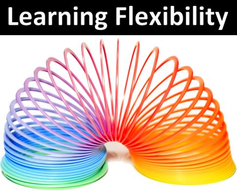 learning-flexibility[1]