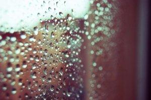 good_morning_rain_by_larkthis-d1bud5o[1]
